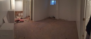 Prior to Mold Remediation