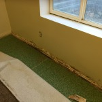 mold clean up