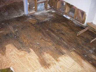 Water Damage Removal Facts For Property Owners