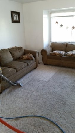 Carpet Cleaning Service for Homes