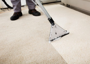 Keeping Your Carpet Magical: A Guide to Finding the Perfect Carpet Genie