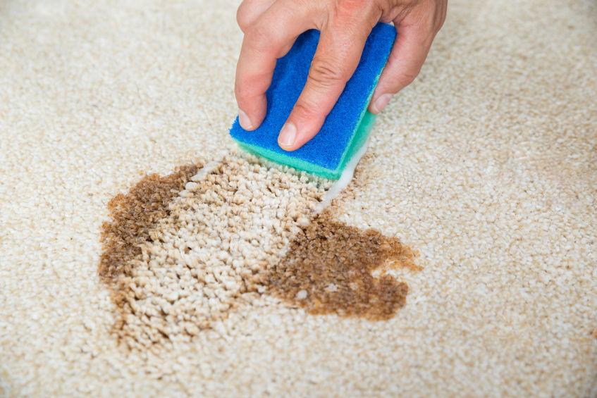 Как убрать грязное пятно с ковра фото